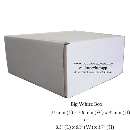 Big White Carton Box 10pcs