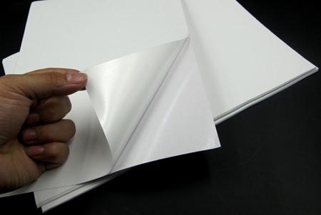 white-pvc-sticker1